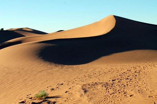 Dar Sidi Bounou : Shadows on the dunes