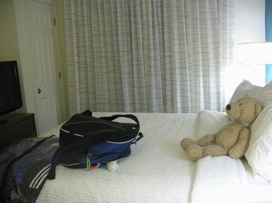 Residence Inn Danbury: The bear watches tv in the bedroom