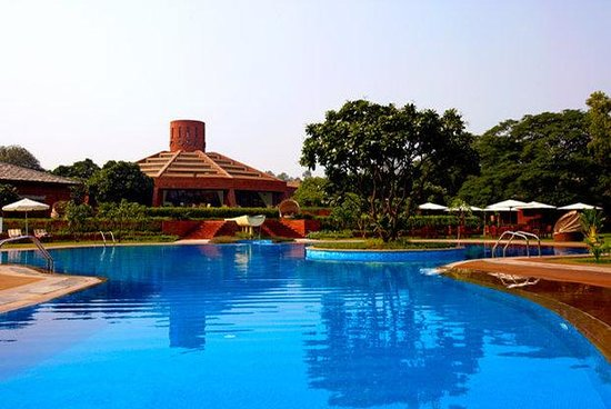 Westin Sohna Resort and Spa : Pool View