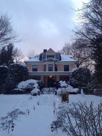 The Lion and The Rose Bed and Breakfast: Beautiful snow