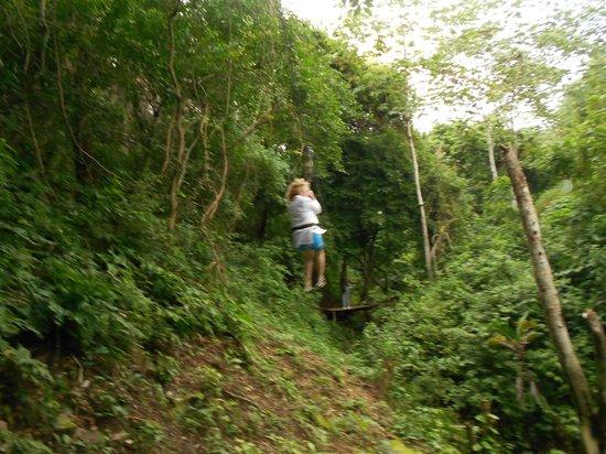 Jungle Top Zipline Adventure: more ziplining
