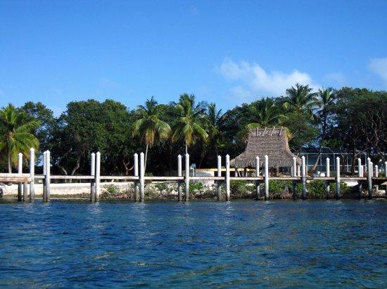 Dream Bay Resort: View from the kayak