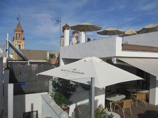 Hotel Amadeus: Rooftop Terrace
