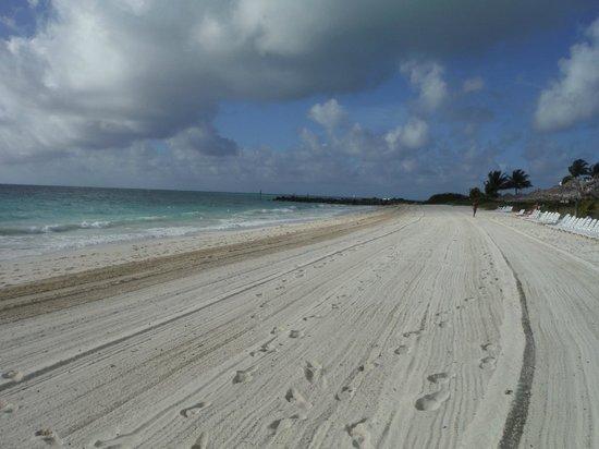 Taino Beach Resort & Clubs : Taino beach