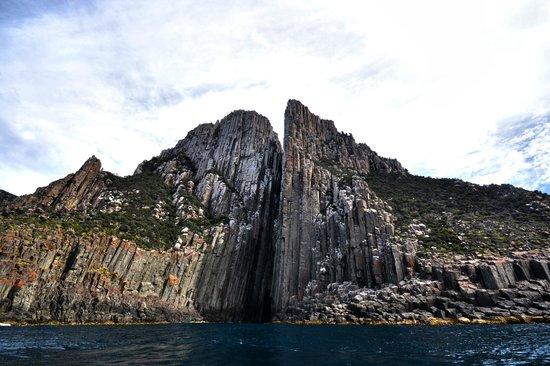 Tasman Island Cruises : Cruise