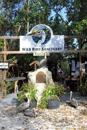 Florida Keys Wild Bird Rehabilitation Center : Entrance