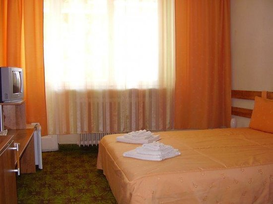 Hotel Dobrogea: Guest Room