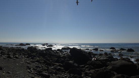 Punta Morro: Amazing view