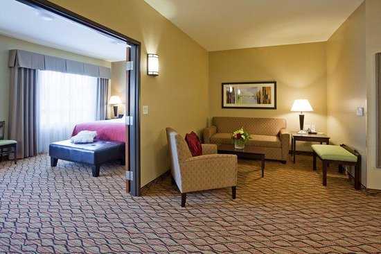 Holiday Inn Eau Claire South I-94: Suite