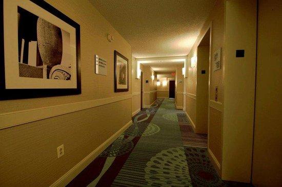 Holiday Inn Express Philadelphia E - Penns Landing: Guestroom Hallways