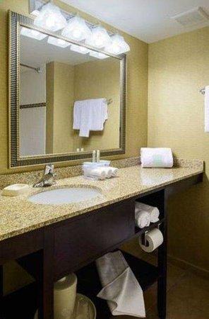 Holiday Inn Express Philadelphia E - Penns Landing: Guest Bathroom
