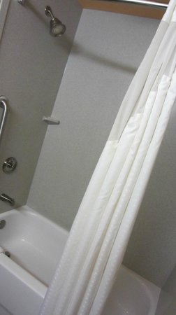 Holiday Inn Airport South: Shower