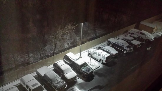 Holiday Inn Airport South : Snowing Outside