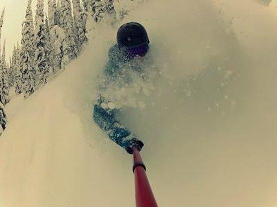 Dancing Bear Inn: Powder Skiing