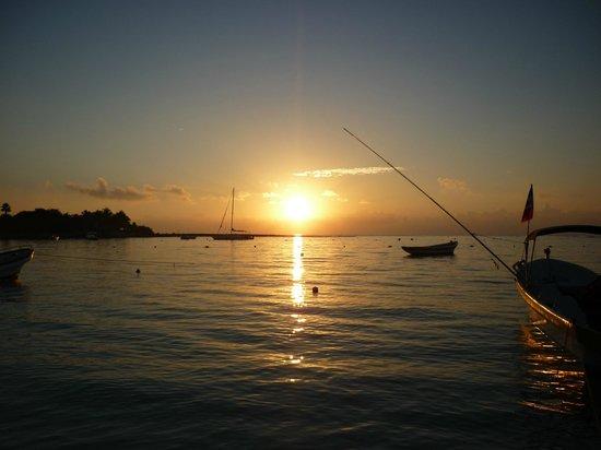 Hotel Akumal Caribe: Estuvimos muy temprano en la playa y pudimos contemplar este amanecer