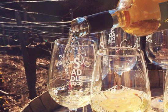 Malibu Wine Safaris : the first of the wine tastings!
