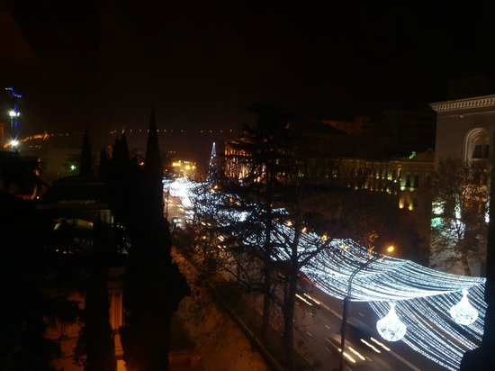 Tbilisi Marriott Hotel: View of the main boulevard