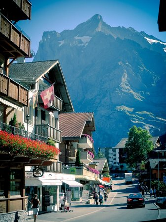 Nature's Friends : Grindelwald Town