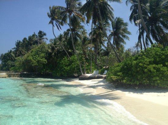 Bandos Maldives : plages