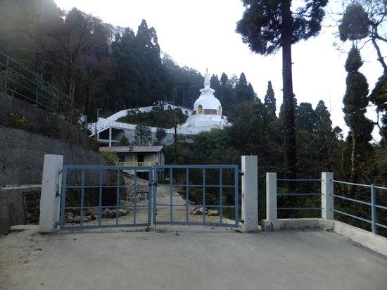 Hotel Anand Palace: Peace pagoda ,Darjeeling