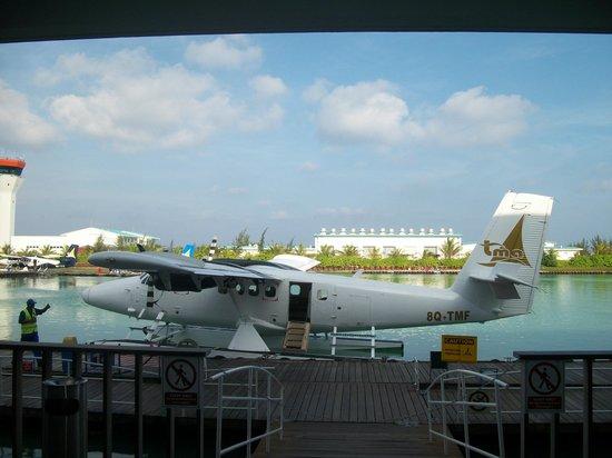 Diamonds Thudufushi : a votre arrivée