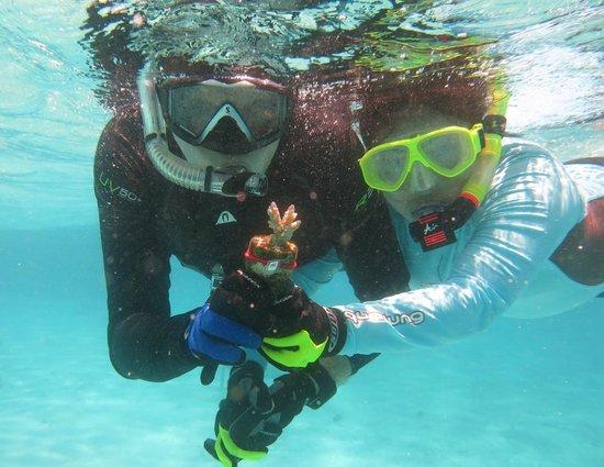 Huvafen Fushi Maldives: Adopt a Coral