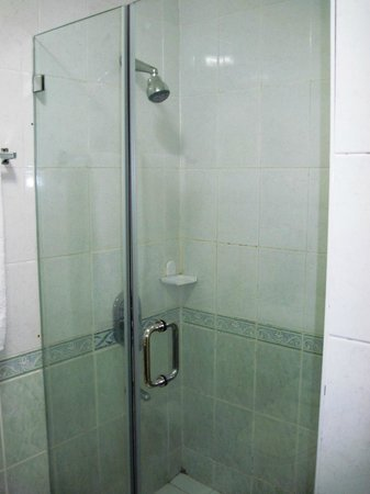 Manila Airport Hotel: The shower, very nice too.