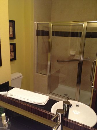 Holiday Inn Hotel & Suites McKinney - Fairview: Nice walk in shower