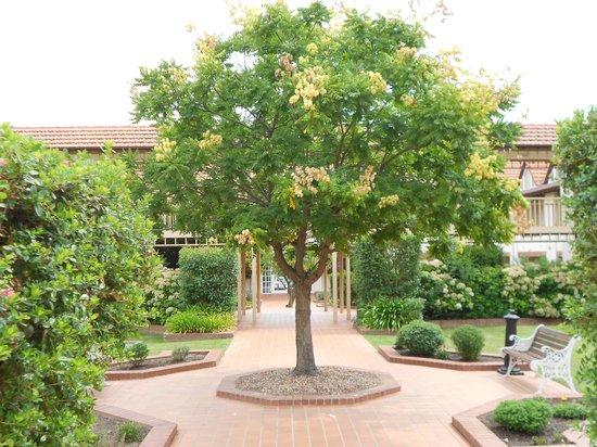 Mercure Canberra: garden setting