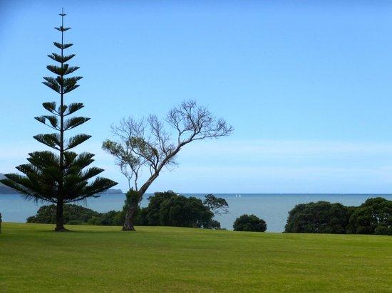 Waitangi Treaty Grounds : Treaty grounds