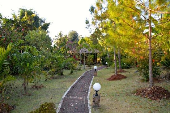 Mai Siam Resort : gardens
