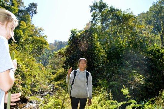 Mai Siam Resort: Hiking with Pranee