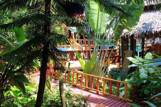 Varinda Garden Resort: Jardin