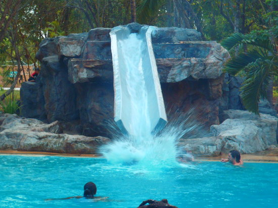 Forest Dream Resort: Splash!