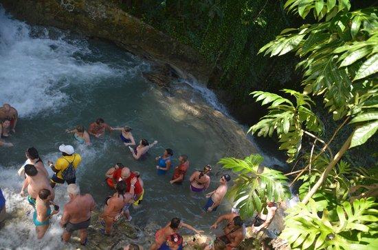ClubHotel Riu Ocho Rios : Dunn's River Falls