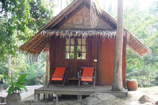 Jungle Club: the hut