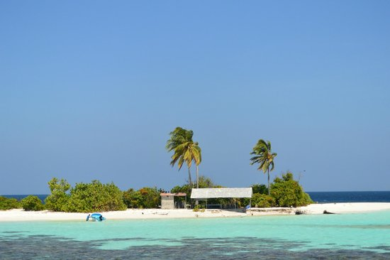 Ellaidhoo Maldives by Cinnamon : Diggiri Island