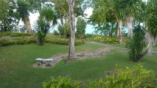 La Creole Beach Hotel: vue mer