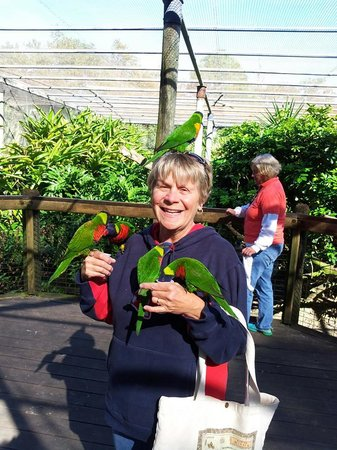 Brevard Zoo: My BFF feeding Birds