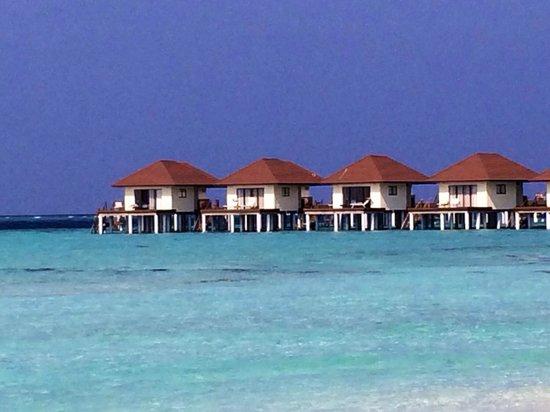 Alimatha Aquatic Resort: Gli overwater