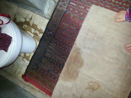 Riad Palmier : Leaking toilet