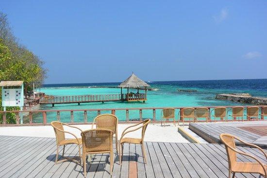 Ellaidhoo Maldives by Cinnamon : Bar
