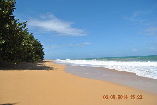 Bluff Beach Retreat: Bluff Beach