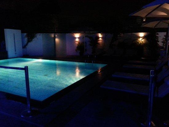 The Golkonda Hyderabad: Swimming Pool