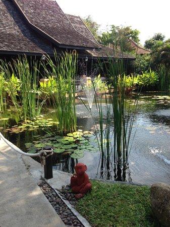 Bo Phut Resort & Spa : Pond