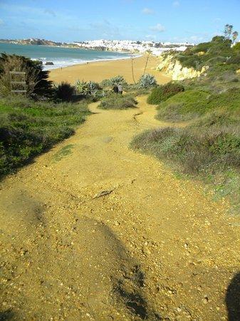 Auramar Beach Resort: steep path down to the beach