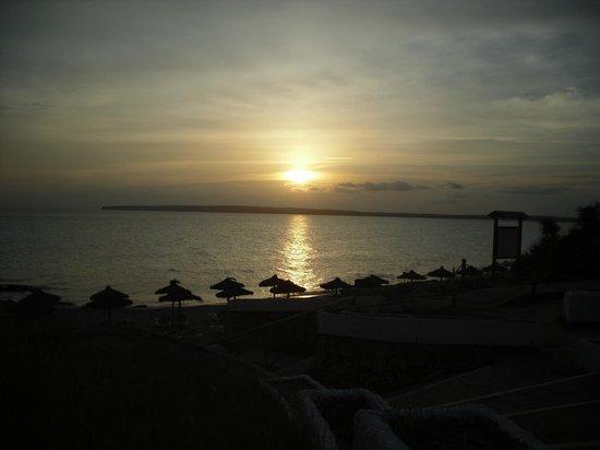 Insotel Club Maryland: Sempre un bel tramonto