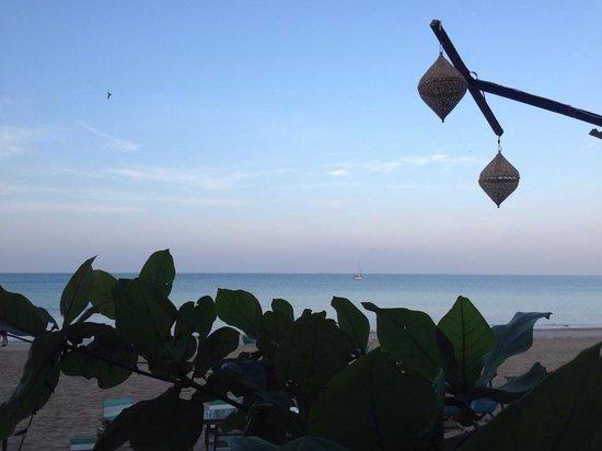 Banana Garden Home : La plage