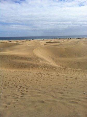 Sahara Beach Club: vista dune dal lungomare
