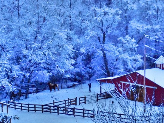 Horse Creek Stable Bed and Breakfast: Winter